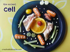 Make a cell out of healthy foods from the fridge - great for a science lesson for home schoolers, science classroooms, or simple reinforcement at home when your student learns about cells.  CreativeKidSnacks.com