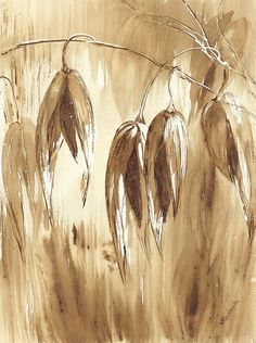 Owies - watercolour painted with coffee - Maria Roszkowska