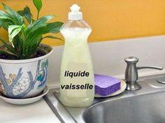 Liquide vaisselle fait maison avec thermomix, voici deux recette, liquide de vaisselle à la main et liquide de lave-vaisselle.