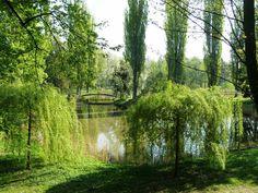 Hradec Králové - Šimkovy sady Country Roads, Plants, City, Nice Asses, Planters, Plant, Planting