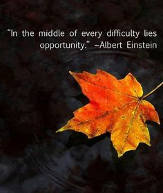 """""""In the middle of every difficulty lies opportunity"""". ..Albert Einstein."""
