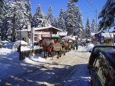 Отдых в Болгарии зимой :: болгария зима отдых :: Места отдыха :: KakProsto.ru: как просто сделать всё