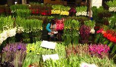 5 Mercados de flores (Para todos los gustos y presupuestos) 5 Flower Markets!