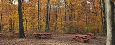 Hiking Trails : NYC Parks
