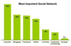 "B2B Marketers: 53% Will Be ""Intensely Engaged"" in Social Media Marketing By 2013"