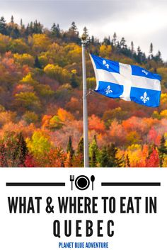 Are you planning a holiday in Quebec? Discover why you should explore the Eastern Townships of Quebec in this Quebec food guide to all the best things to eat there and where to eat. Find the best places to eat in Quebec right here! Start planning your foodie adventure in Quebec today! I things to do in Quebec I food in Quebec I where to eat in Quebec I what to eat in Quebec I Quebec travel I Canada travel I #Quebec #foodguide #Canada Travel Around The World, Around The Worlds, Artisan Beer, Stuff To Do, Things To Do, Of Montreal, Quebec City, Travel Abroad, Canada Travel