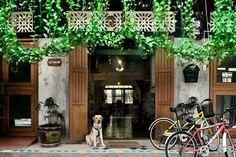 Best Cheap Hostels in Bangkok - Cozy Place Hostel