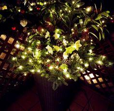 Christmas pot decoration- kültéri kaspó karácsonyi díszítés Outdoor Christmas Decorations, Holiday Decor, Christmas Tree, Home Decor, Teal Christmas Tree, Decoration Home, Room Decor, Xmas Trees, Xmas Tree