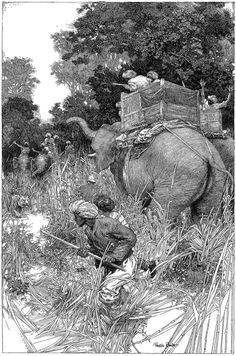Franklin Booth ~ probably one of the best pen and ink artists ever!
