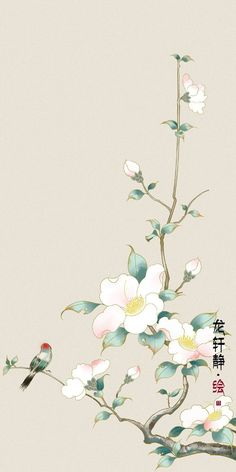 Chinese Flowers, Chinese Art, Asian Art, Drawings, Beautiful, China, Home Decor, Interior, Garden