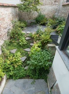 Small Courtyard Garden Design Inspiraions 39