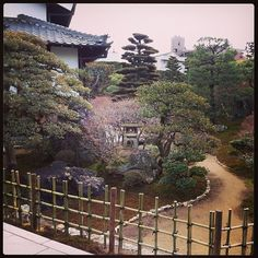 A beautiful Japanese Garden at a temple in Gifu
