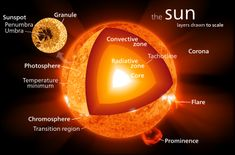 The structure of the Sun. Chemically, about three quarters of the Sun's mass consists of hydrogen, while the rest is mostly helium. The remainder (1.69%, which nonetheless equals 5,600 times the mass of Earth) consists of heavier elements, including oxygen, carbon, neon and iron, among others.