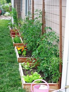 If space is an issue the answer is to use garden boxes. In this article we will show you how all about making raised garden boxes the easy way. We all want to make our gardens look beautiful and more appealing. Backyard Vegetable Gardens, Veg Garden, Vegetable Garden Design, Garden Types, Garden Landscaping, Outdoor Gardens, Vegetables Garden, Small Yard Vegetable Garden Ideas, Fresh Vegetables