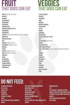 What dogs can & can't eat