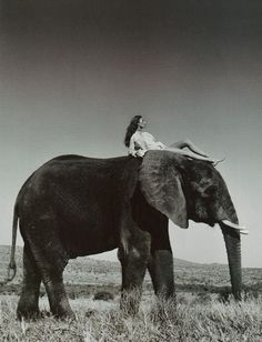 life through the metaphor of a rider on the back of an elephant in which the conscious mind is the rider and the unconscious mind is the elephant. The rider is unable to control the elephant by force: this explains many puzzles about our mental life, particularly why we have such trouble with weakness of will. Learning how to train the elephant is the secret of self-improvement.