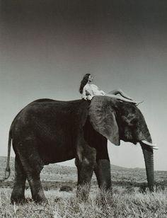 """""""Wild""""  Harper's Bazaar US, May 1999  Photographer: Wayne Maser  Model: Aurelie Claudel  Makeup: Virginia Young  Hair: Serge Normant"""