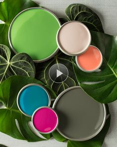 Hear the story behind the BHG Color Palette of the Year and how it can inspire you to be fearless in experimenting with new color palette ideas in your home's décor.