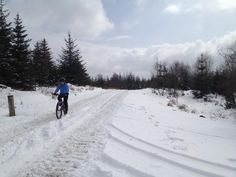 Snowy bike ride at Grizedale Forest