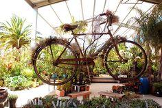 bike cafe visual display with plants - Bing Images Flora Grubb, Merchandising Displays, Retail Displays, Visual Display, Baby Grows, Green Day, Bing Images, Fair Grounds, Nursery