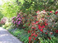 """Jevremovac"" botanical garden, Belgrade, Serbia"