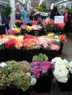 See shop eat do los angeles blog visits the flower mart in the la see shop eat do los angeles blog visits the flower mart in the la flower district la flower district pinterest los angeles angeles and buckets mightylinksfo
