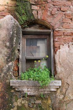 Very old rustic #window.