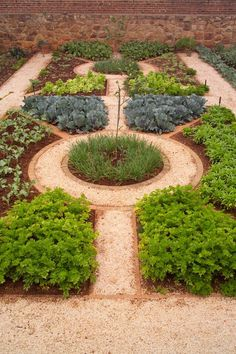 Lovely vegetable garden design - gravel paths outlined with brick