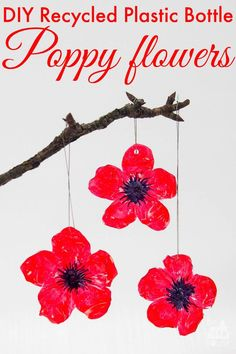 This simple poppy craft is a perfect remembrance day activityDIY Recycled Plastic Bottle Poppy Craft. This simple poppy craft is a perfect remembrance day activity Reuse Plastic Bottles, Plastic Bottle Flowers, Plastic Bottle Crafts, Recycled Bottles, Soda Bottle Crafts, Paint Plastic, Recycled Tires, Plastic Craft, Tyres Recycle