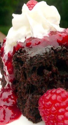 Chocolate Zucchini Cake with Raspberry Sauce