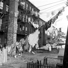 Laundry out to dry, Brooklyn, 1946.
