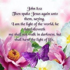 Then spoke Jesus again unto them, saying, I am the light of the world; he that followeth me shall not walk in darkness, but shall have the light life. John 8:12 KJV