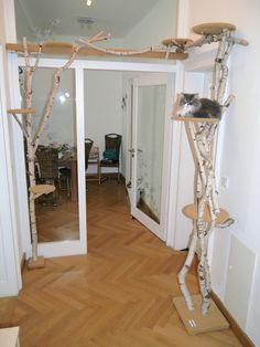 Wandkratzbaum Selber Bauen : kratzbaum selber bauen 67 ideen und bauanleitungen katzen sachen pinterest ~ Watch28wear.com Haus und Dekorationen