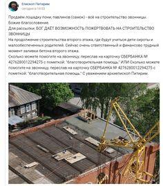 Архиепископ Сыктывкарской епархии Питирим (Волочков) выставил на продажу павлинов
