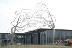 Roxy Paine sculpture of conjoined trees at the Fort Worth Museum of Modern Art is a beautiful example of how a new material can change our perspective of a common tree.