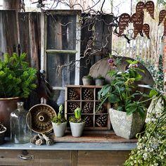 Die 10 Besten Bilder Von Gartentisch Im Dezember Yard Advent Und