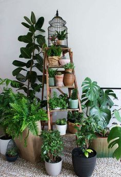 Ladders are a great alternative to pot stands. Just be sure that your pots are secure and stable to avoid any accidents.