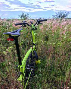 roylukito | #brompton #bromptonlovers #mybrompton #bromptonindonesia #bromptoncommunity #bromptonownersgroupindonesia #bromptonsurabaya #bogiindonesia #bromptonbike #bromptonmafia #bromptonsociety Brompton, Outdoor Power Equipment, Garden Tools, Cycling, Freedom, Bicycle, Green, Instagram, Bicycles