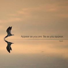 Appear as you are & Be as you appear...❤️                                                                                                                                                                                 More