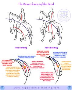 HHT Dressage Diagrams