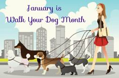 January is Walk Your Dog Month Cover Photo #walkyourdogmonth #petawareness