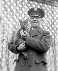 Image detail for -President Calvin Coolidge's cat, Tiger, with a White House police ...