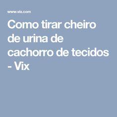 Como tirar cheiro de urina de cachorro de tecidos - Vix