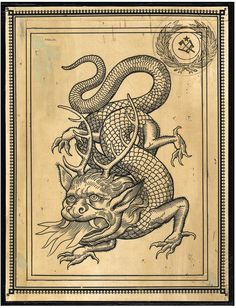 Medieval Tattoo, Medieval Drawings, Medieval Art, Occult Symbols, Occult Art, Landsknecht, Antique Illustration, Fantastic Art, Gravure