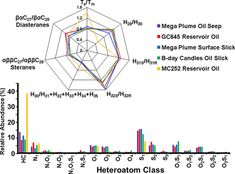 Linking Natural Oil Seeps from the Gulf of Mexico to Their Origin by Use of Fourier Transform Ion Cyclotron Resonance Mass Spectrometry