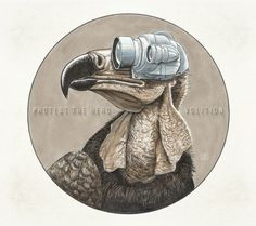 Protest The Hero – Volition | Metal Is Power