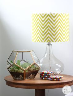 terrarium in a geometric glass dome from @inspiredbycharm