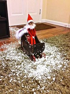 Fun way to have your Elf on the Shelf arrive #Christmas #thanksgiving #Holiday #quote