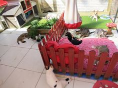 Catio! favorite place of our special needs cats!