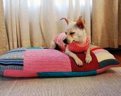 sweaters from a thrift store, a pillow, and basic sewing skills needed for this cute pet bed